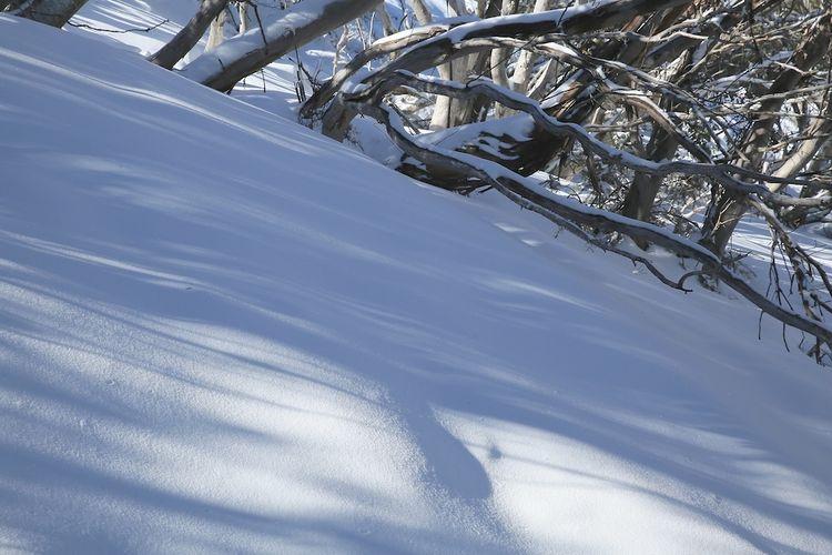 Snow day 25