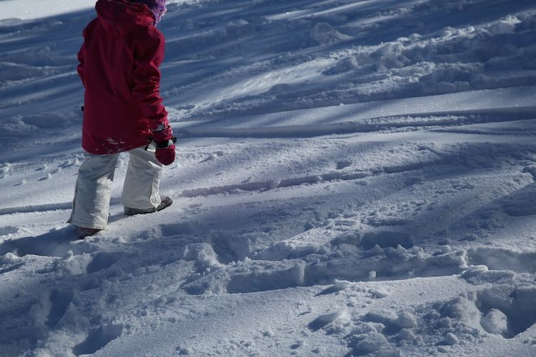 Snow day 27