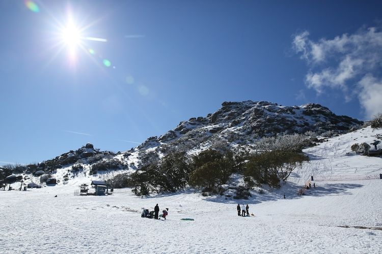 Snow day 12