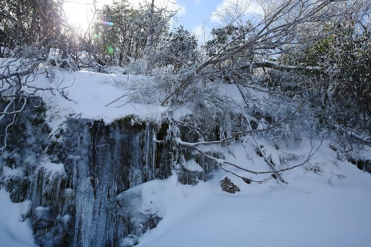 Snow day 11